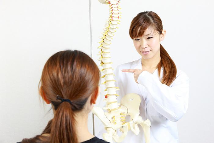 骨格模型を用いながら説明する